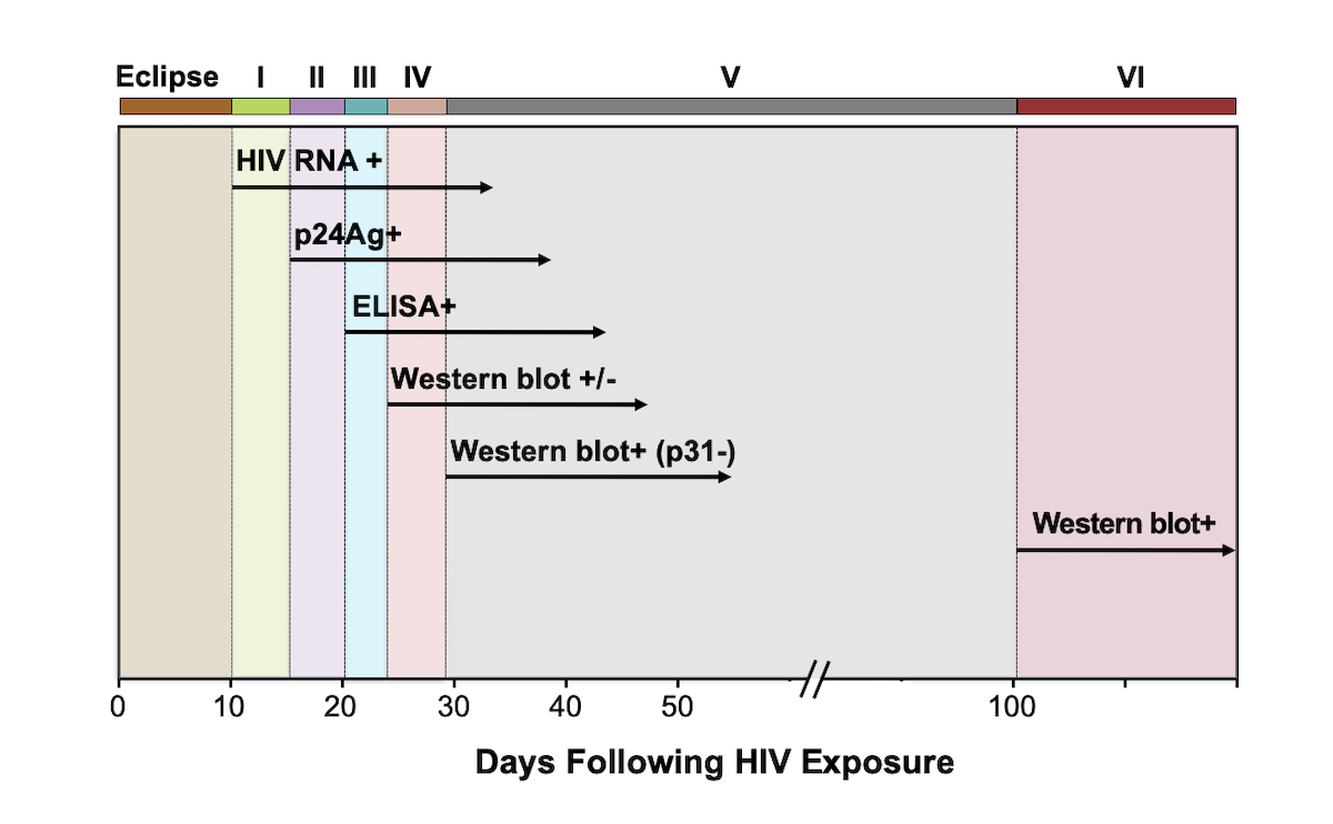 Acute and Recent HIV Infection - Core Concepts