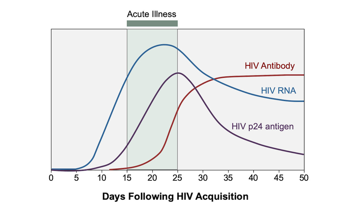 Acute HIV infection is defined as the phase of HIV disease that occurs immediately after HIV acquisition and is characterized by detectable HIV RNA or HIV p24 antigen in the absence of detectable anti-HIV antibodies.<div></div>