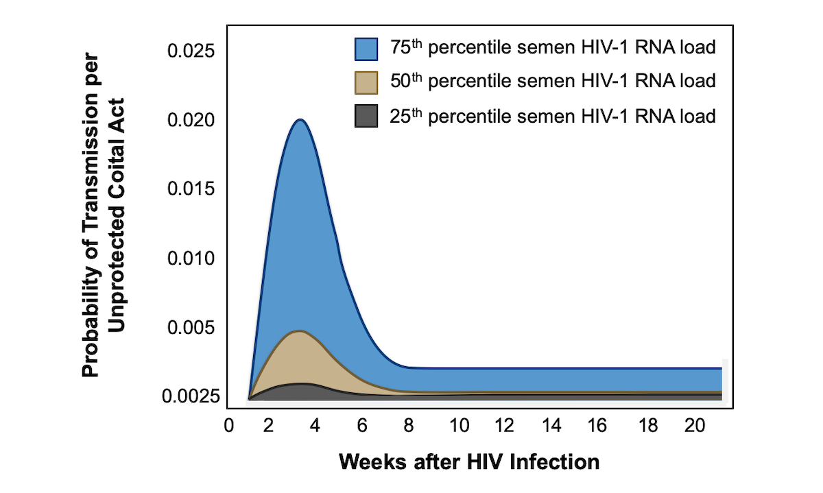 <div>Source: Pilcher CD, Tien HC, Eron JJ Jr, et al. Brief but efficient: acute HIV infection and the sexual transmission of HIV. J Infect Dis. 2004;189:1785-92.</div>