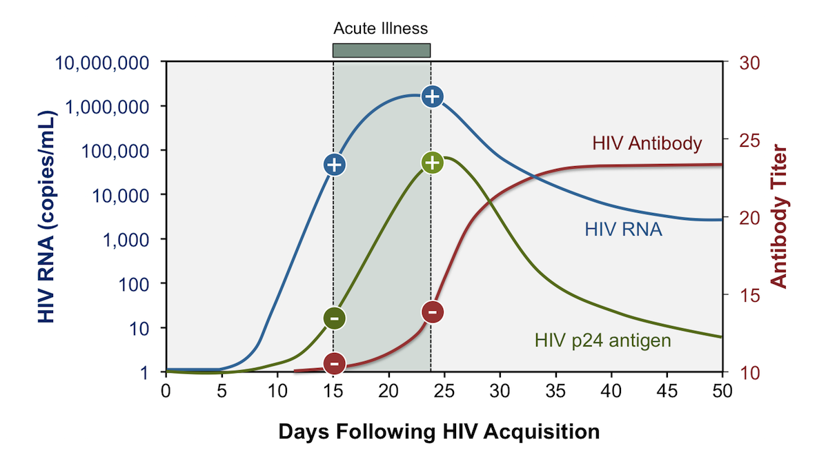 <div>Source: adapted from Masciotra S, Smith AJ, Youngpairoj AS, et al. Evaluation of the CDC proposed laboratory HIV testing algorithm among men who have sex with men (MSM) from five US metropolitan statistical areas using specimens collected in 2011. J Clin Virol. 2013;58 Suppl 1:e8-e12.</div>