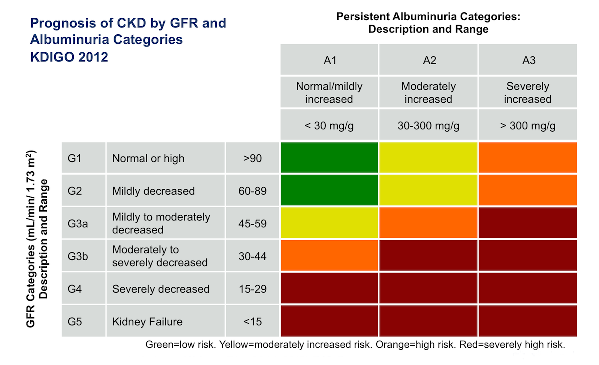 furthermore Finalize Improvement Plans additionally Csr also Prognosis Chronic Kidney Disease Gfr Albuminuria Categories Kidgo besides Of. on basic concepts of risk management