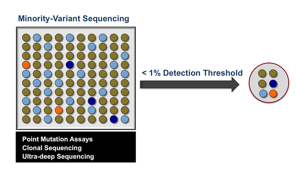 To detect minority variant species, several types of assays have been developed that have enhanced sensitivity for resistant variants.  These newer assays include point mutation assays, clonal sequencing, and ultra-deep sequencing.<div></div>