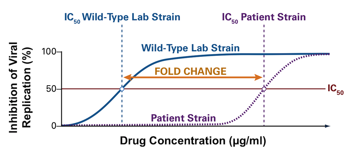 This graph shows the method for calculating the level of phenotypic resistance of a single antiretroviral medication. The antiretroviral drug is tested on a patient's HIV isolate and a laboratory reference (wild-type strain). The IC50 represents the concentration of the antiretroviral drug required to cause 50% inhibition of HIV replication. The fold change is calculated by dividing the IC50 of the patient's isolate by the IC50 of the wild-type laboratory strain. As shown, as the curve shifts to the right, a higher concentration of drug would be required to inhibit HIV replication and thus the strain of HIV would be more resistant. The further the curve shifts to the right (for the patient's HIV strain tested), the greater the level of resistance.<div></div>