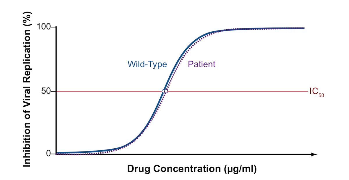 This graph shows a phenotypic susceptibility curve comparing the effect of a single antiretroviral drug on the patient's HIV and a laboratory reference (wild-type strain). The wild-type strain is known to be susceptible to the drug tested. The graph shows a similar IC50 for both the patient and wild-type HIV and this would be interpreted that the patient's HIV is susceptible to the drug tested in this assay.<div></div>