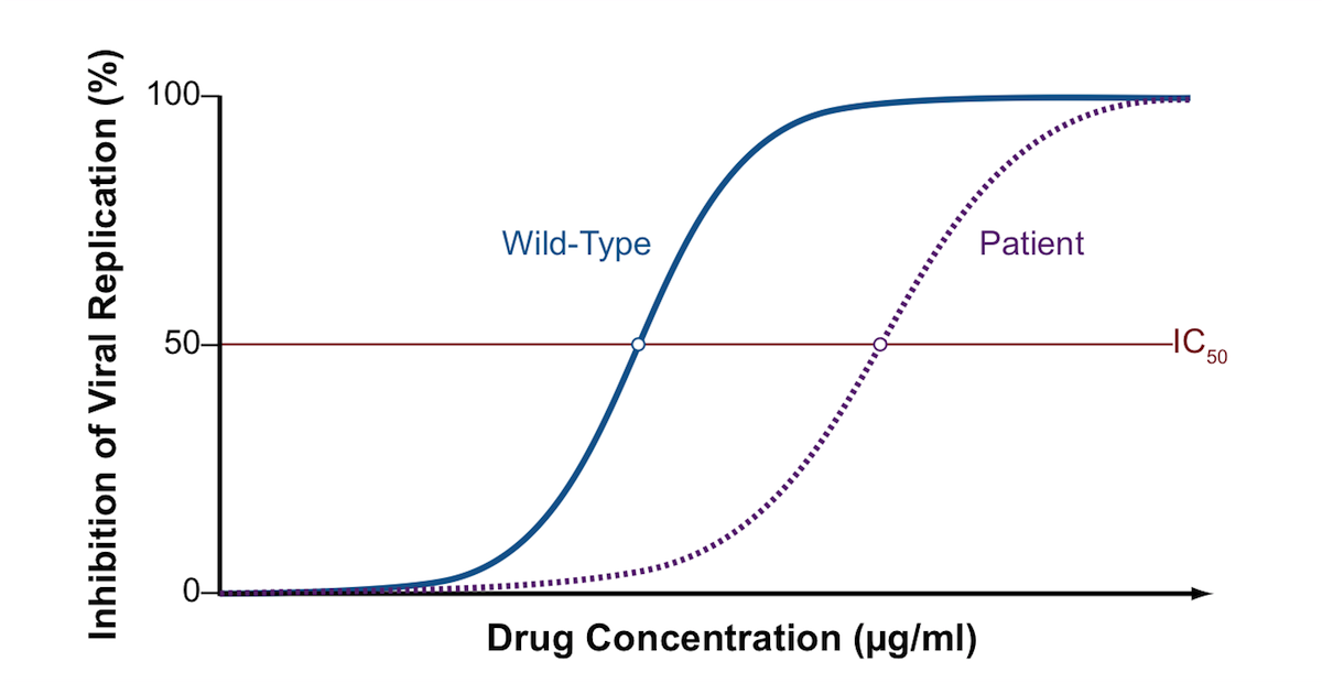 This graph shows a phenotypic susceptibility curve comparing the effect of a single antiretroviral drug on the patient's HIV and a laboratory reference (wild-type strain). The wild-type strain is known to be susceptible to the drug tested. The graph shows a significant shift to the right for the patient's HIV isolate compared with the wild-type strain, thus a higher concentration of drug is required to inhibit replication of the patient's HIV. Conceptually, this graph is showing the patient's HIV strain is resistant to the medication tested. In the actual phenotypic assay, the exact level of resistance is calculated by dividing the IC50 of the patient's isolate by the IC50 of the wild-type laboratory strain.<div></div>