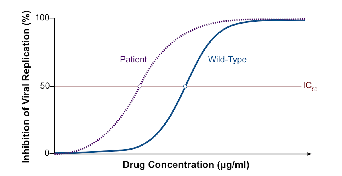 This graph shows a phenotypic susceptibility curve comparing the effect of a single antiretroviral drug on the patient's HIV and a laboratory reference (wild-type strain). The wild-type strain is known to be susceptible to the drug tested. The graph shows a significant shift to the left for the patient's HIV isolate compared with the wild-type strain, thus a lower concentration of drug is required to inhibit replication of the patient's HIV. Conceptually, this graph is showing the patient's HIV strain is hypersusceptible to the medication tested. In the actual phenotypic assay, the exact level of hypersusceptibility is calculated by the dividing the IC50 of the patient's isolate by the IC50of the wild-type laboratory strain.<div></div>