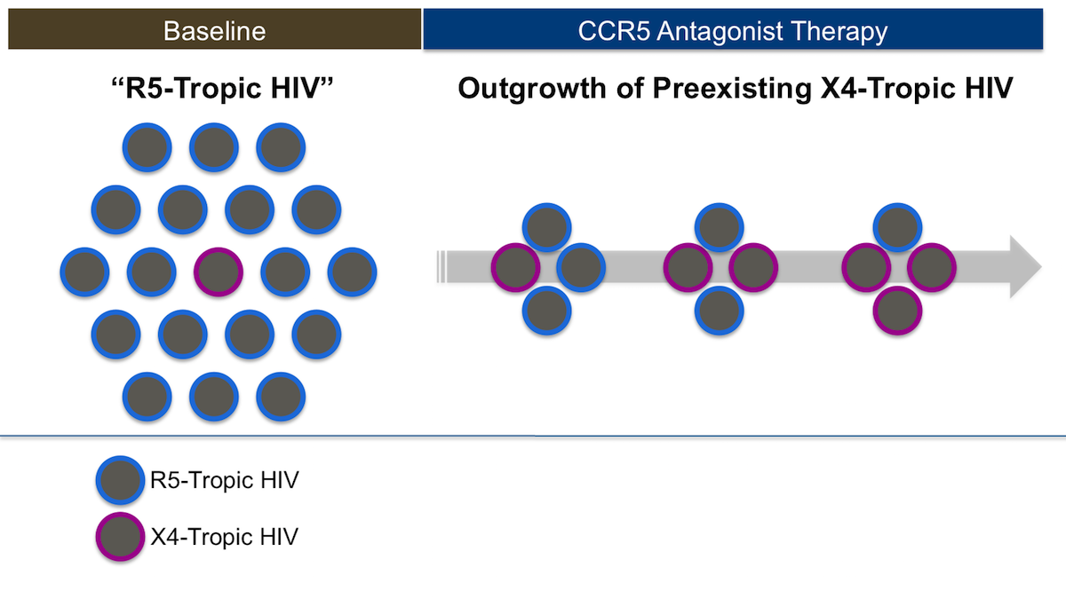 This illustration shows the emergence of preexisting minority variants of X4-tropic virus that are preferentially selected out from the use of a CCR5 antagonist.<div>Illustration: David H. Spach, MD</div>