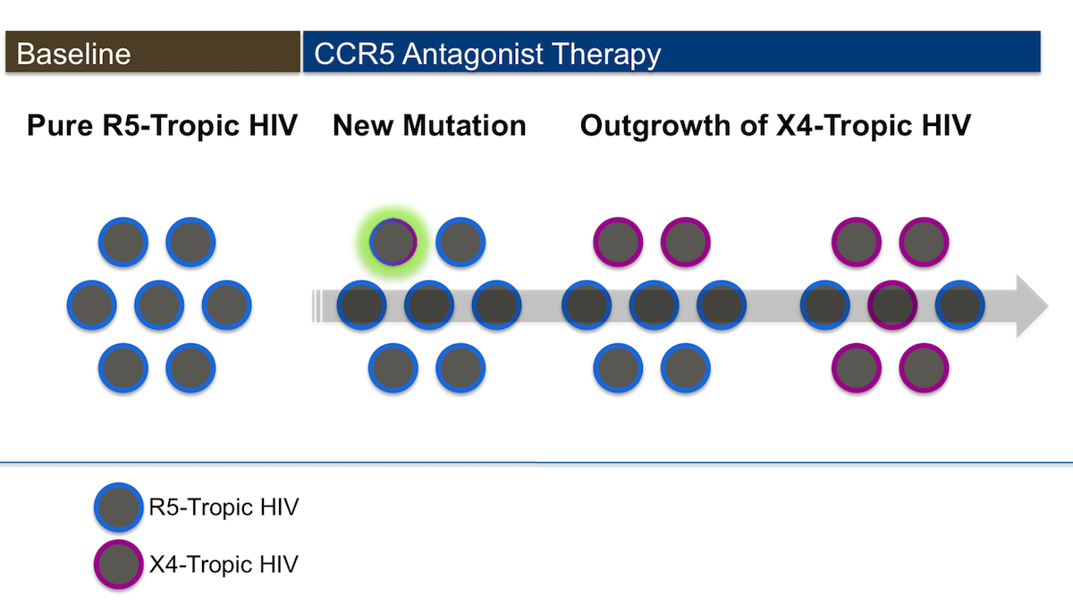 This illustration shows emergence of newly formed X4-tropic HIV as a result of mutations in the HIV gp120 region. This contrasts with emergence of preexisting minority variants of X4-tropic virus.<div>Illustration: David H. Spach, MD</div>