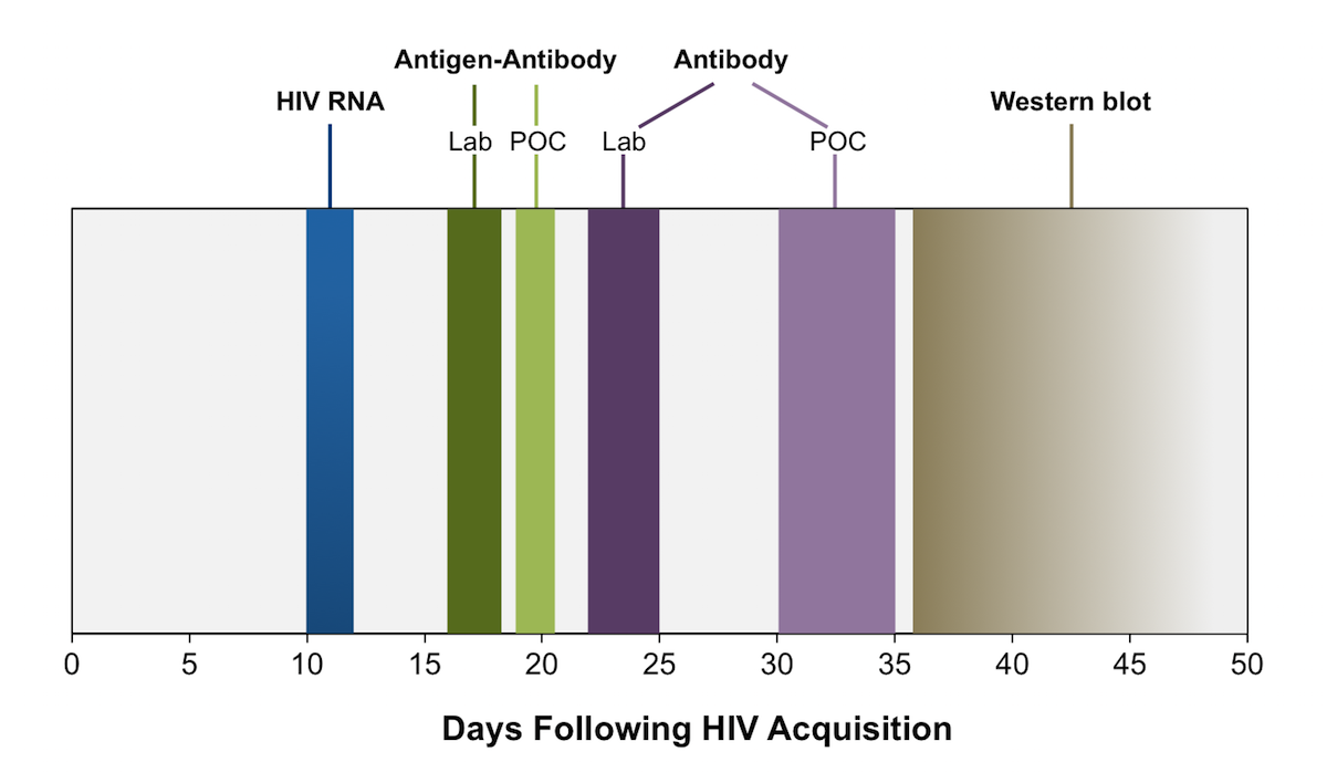 This graphic illustrates the approximate time from HIV infection to test positivity.<div>Source: modified from Centers for Disease Control and Prevention and Association of Public Health Laboratories. Laboratory Testing for the Diagnosis of HIV Infection: Updated Recommendations. Published June 27, 2014.</div>