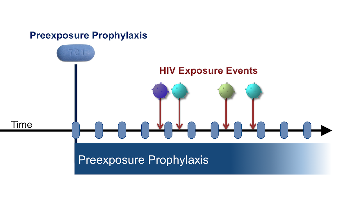 When preexposure prophylaxis is taken, the antiretroviral medications can provide protection when exposures to HIV occur.<div>Illustration by David H. Spach, MD</div>