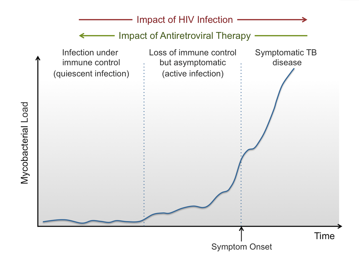 This graphic shows the impact of HIV-related immunosuppression on the course of latent tuberculosis infection. With progressive HIV-related immune suppression, mycobacterial load increases and symptomatic tuberculosis may develop. In contrast, taking antiretroviral therapy will restore some HIV-related immune suppression and contribute to immune control of <em>Mycobacterium tuberculosis</em>.<div>Source: Lawn SD, Wood R, Wilkinson RJ. Changing concepts of <q>latent tuberculosis infection</q> in patients living with HIV infection. Clin Dev Immunol. 2011;2011. pii: 980594.</div>
