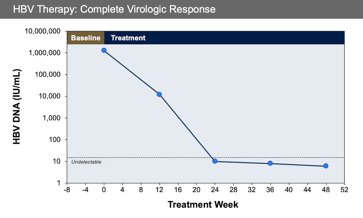 This graphic shows undetectable HBV DNA levels at 24 to 48 weeks using a real-time HBV DNA assay.<div></div>