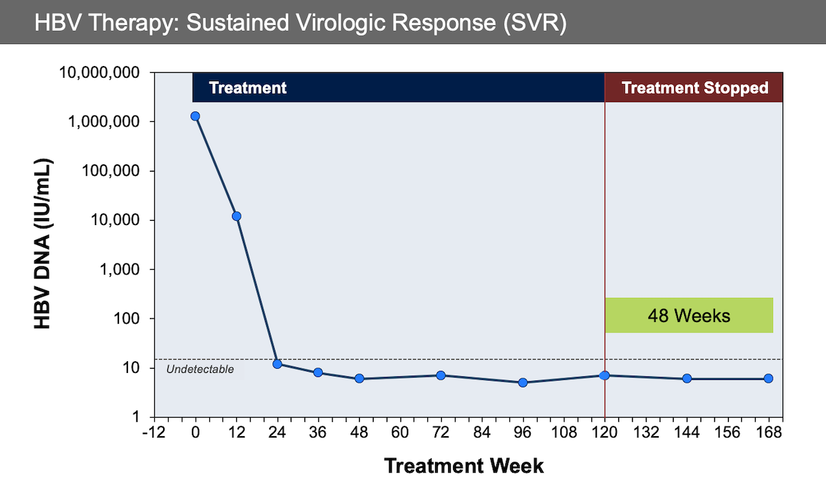 In this example, HBV therapy is given for 120 weeks and the HBV DNA is maintained at undetectable levels for weeks 24 to 120. The HBV DNA levels remain undetectable for 48 weeks after discontinuing therapy.<div></div>