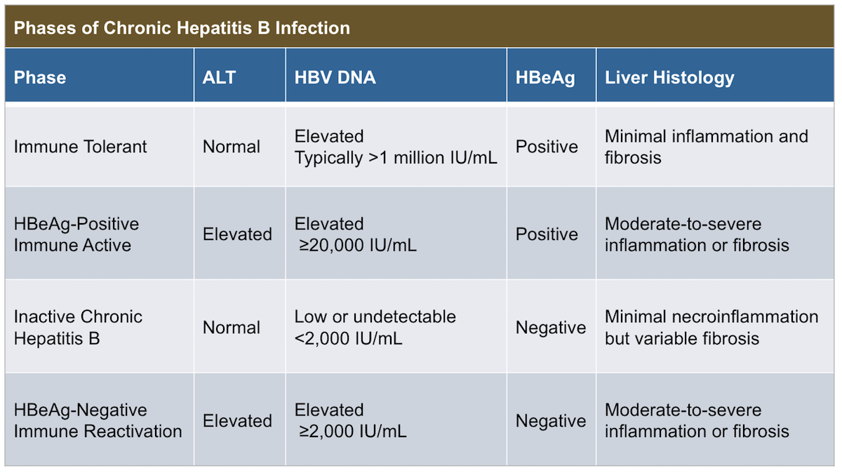 <div>Source: Terrault NA, Bzowej NH, Chang KM, Hwang JP, Jonas MM, Murad MH. AASLD guidelines for treatment of chronic hepatitis B. Hepatology. 2016;63:261-83.</div>