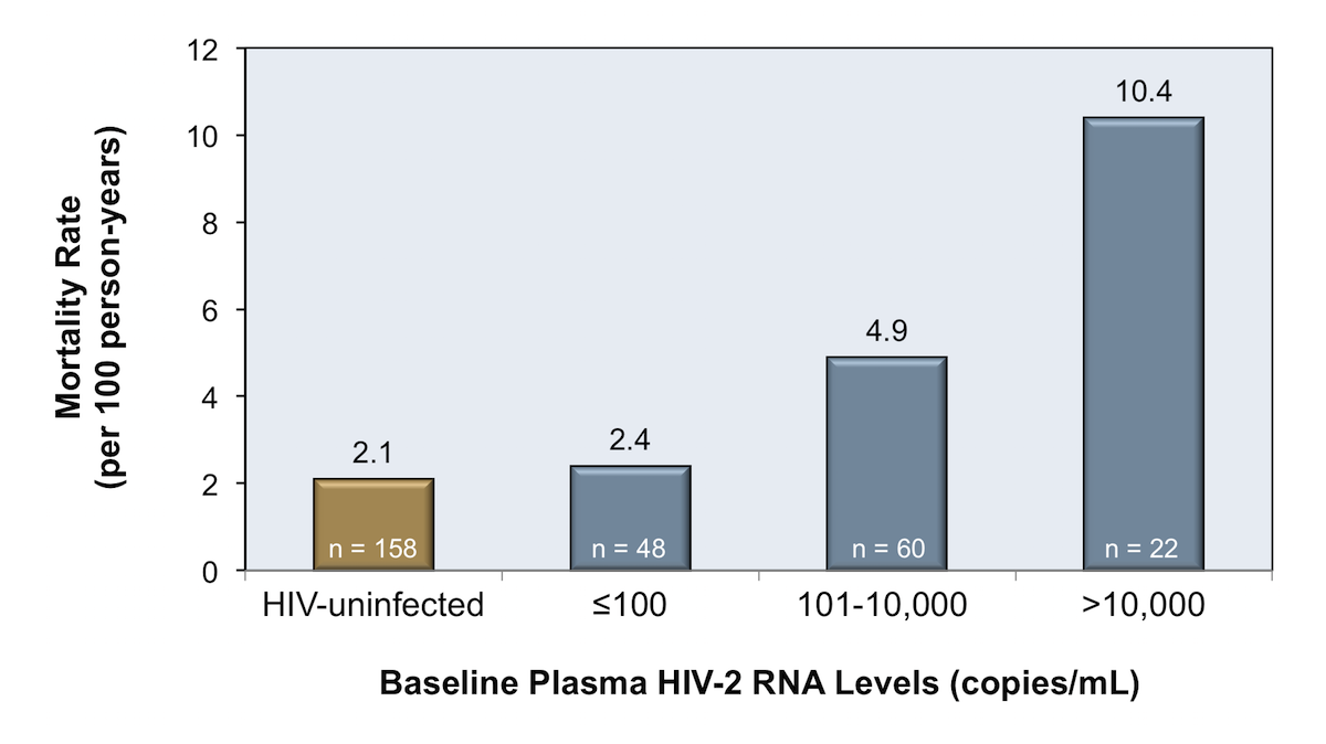 In this study, 138 individuals diagnosed with HIV-2 in a rural West African village had plasma HIV-2 RNA levels were measured in 1991 and investigators tracked mortality of an 18-year period. The group that had a baseline HIV-2 RNA level less than 100 copies/mL had a very low mortality rate 18 years later, similar to that of the general population in West Africa.<div>Source: Schim van der Loeff MF, Aaby P, Aryioshi K, et al. HIV-2 does not protect against HIV-1 infection in a rural community in Guinea-Bissau. AIDS. 2001;15:2303-10.</div>